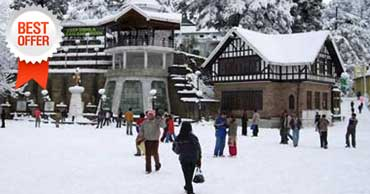 delhi to shimla manali tour by tempo traveller