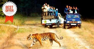 delhi to jim corbett tour by tempo traveller